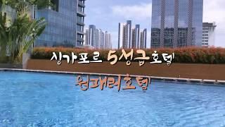 호캉스의 꽃은 수영장!!!!
