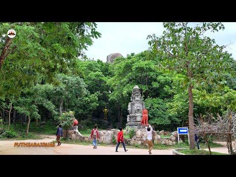 visit-phnom-tamao-zoological-park-and-wildlife-rescue-center-–-phnom-penh-travel---cambodia-tours