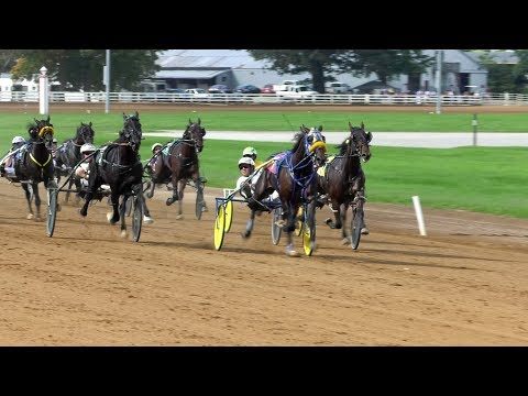 Harness Racing FanZone: Top 10 Moments Of 2018