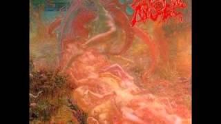 Morbid Angel - Abominations/Desolate Ways