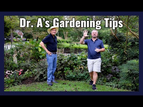 Top 5 Gardening Tips with Dr. Armitage