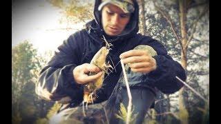 Этой РЫБКЕ Я ВСЕГДА РАД! Ловля майского НАЛИМА. Рыбалка на реке донками - Б.Р. №668