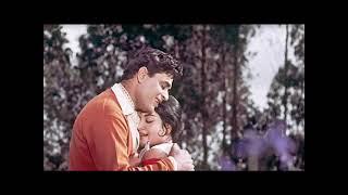Mohammed Rafi, Yeh Mera Prem Patra Pad Kar, Evergreen Romantic Song, Sangam