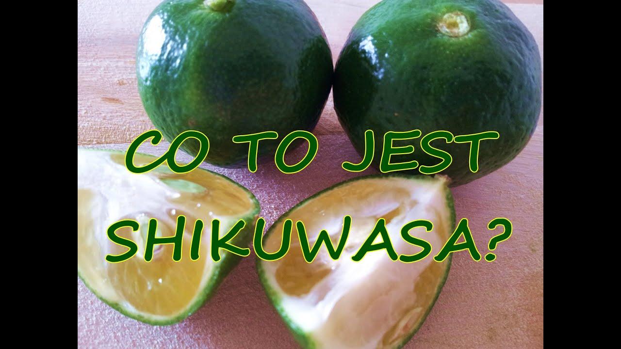 Shikuwasa Co To Jest Owoce Dlugowiecznosci Zdrowa Dieta Dieta Cud Okinawa