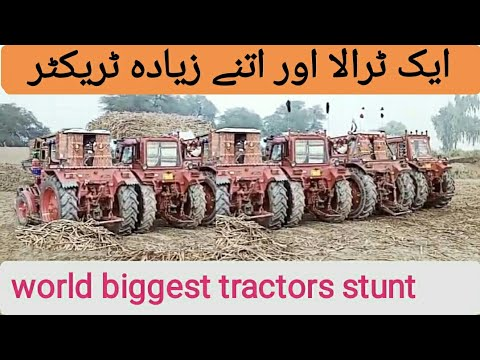 Dangerous Tractors stunt | Belarus & MF Tractors power show | world biggest Tractors power show