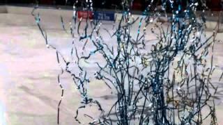 Копия видео Церемония награждения Суперкубок 2015 по хоккею с мячом СКА-Нефтяник - Енисей