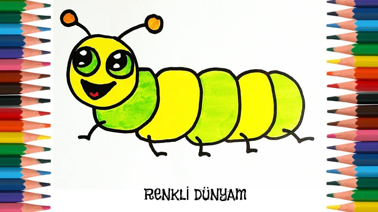 Tirtil Nasil Cizilir Tirtil Cizimi How To Draw A Caterpillar