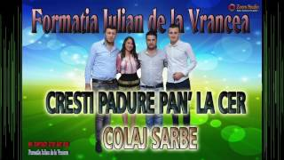 FORMATIA IULIAN DE LA VRANCEA - CRESTI PADURE PAN LA CER, COLAJ SARBE 2016