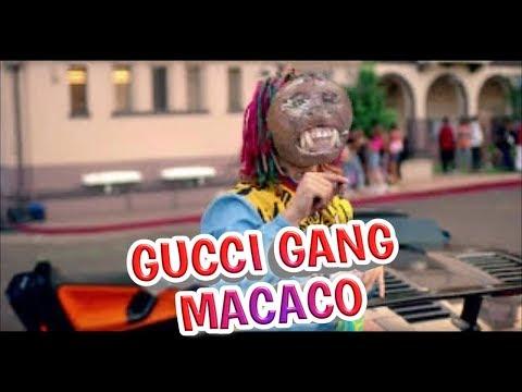 GUCCI GANG MACACO
