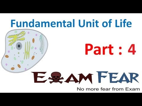 Biology Fundamental Unit of Life part 4 (Multicellular organism) CBSE class 9 IX