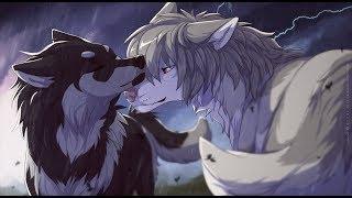 Anime wolves Til my heart stops
