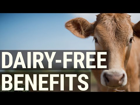 The 7 Best Benefits of Going Dairy Free Better Health, Better You