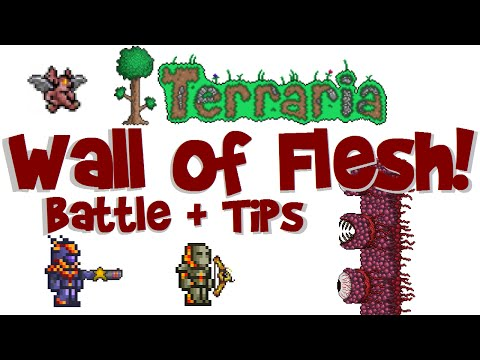 Wall of Flesh Battle! Tips and Tricks! Failure! Success! (Terraria 1.3 PC, Let's Play Guide #19)