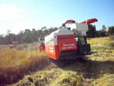 รถเกี่ยวข้าวของมหาแซม Rice Harvest farming