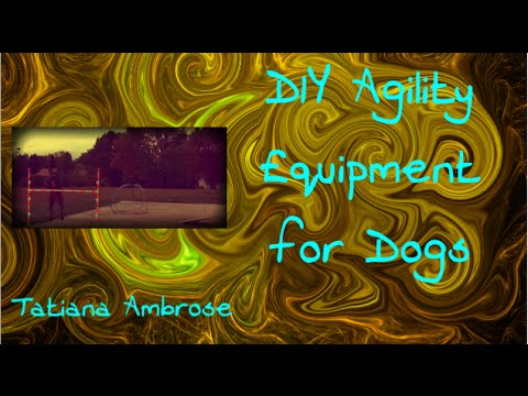 DIY Dog Agility Equipment For Your Pet