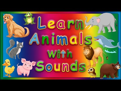 learn-animals-for-children-with-sounds-|-abc-baby-songs---animal-kids
