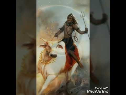 BoB Marley om namah shivay.... Song... And amazing lord shiva pictures..  Weed...weed...