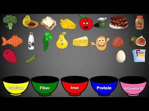 Nutrition For Kids-Food Groups Games   Educational and Learning Video