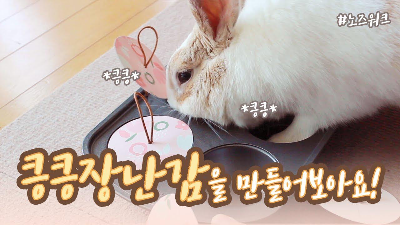 토끼 키우기 (*ꆤ.̫ꆤ*) 토끼에게도 장난감이 필요해! 킁킁장난감(NoseWork)을 만들어보아요!
