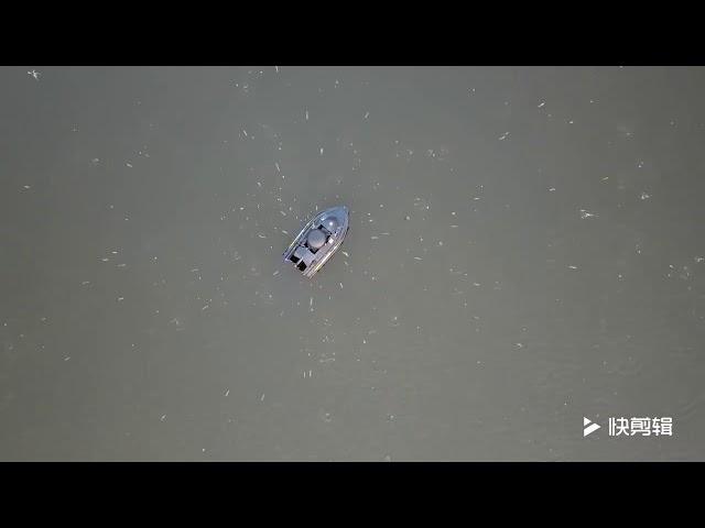 Gediao Bait Boat Bait thrower New design