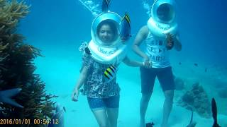 SEA WALK | ANDAMAN | FEB | 2018 | ANVAY | SAYLI | HAVELOCK | ELEPHANT BEACH