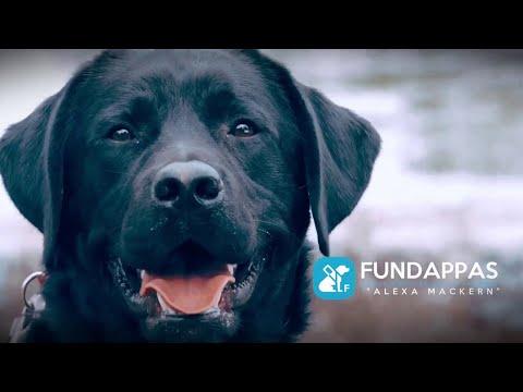 Difícil situación de la fundación Fundappas