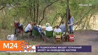 Москвичам напомнили, где можно жарить шашлык - Москва 24