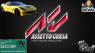 Assetto Corsa - Gameplay ITA - Logitech G27 + TH8A - Corvette C7 Stingray - Black Cat County