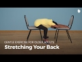 Back Stretches | Exercise for Older Adults