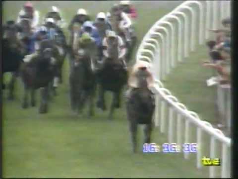 1985 Derby de Epsom - Slip Anchor - Steve Cauthen, turf por Maspalomas
