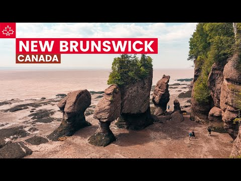 Road to 150: The Best Things To Do In New Brunswick