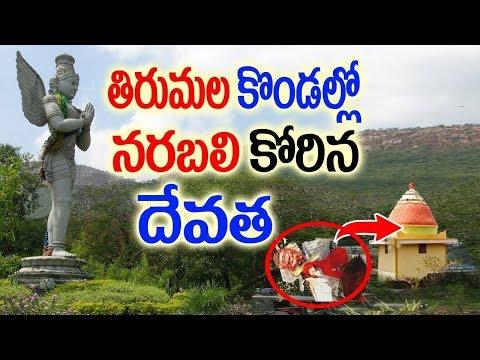 తిరుమల కొండల్లో నరబలికోరిన దేవత In Tirumala Caves Goddess Akkagarla Devata Shown Miracle To Devotees
