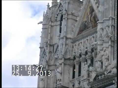 10 Dagen Toscane Florence Pisa en Elba film 2013