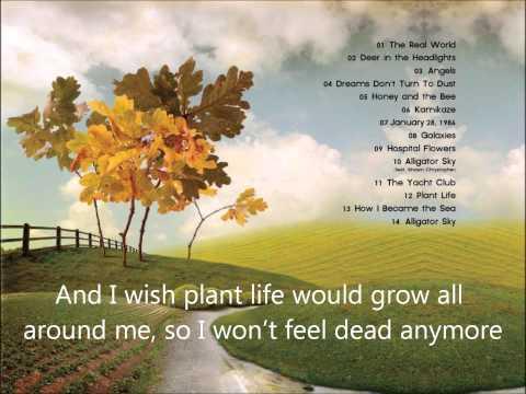 Owl City-Plant Life with lyrics (HQ)