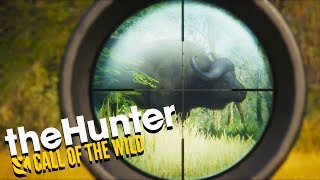 Hunting GIANT BUFFALO on the African Savanah - The Hunter Call of the Wild Gameplay