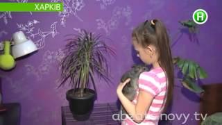 Родная мать хочет выкинуть детей из квартиры на улицу - Абзац! - 05.02.2014