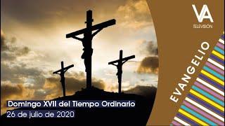 Evangelio del 26 de julio de 2020