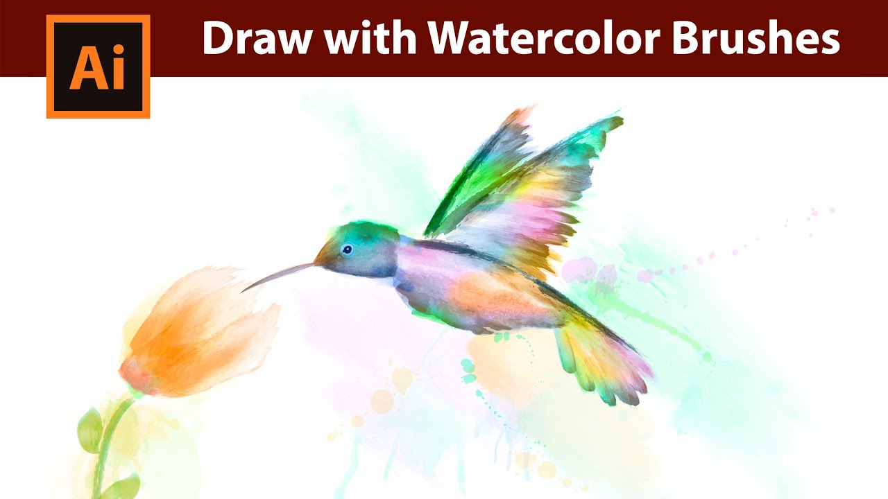 how i draw a kolibri with watercolor brushes in adobe