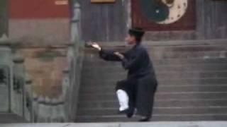 Taiji 13 (太极13式) At Purple Heaven Palace - Master Yuan Xiu Gang