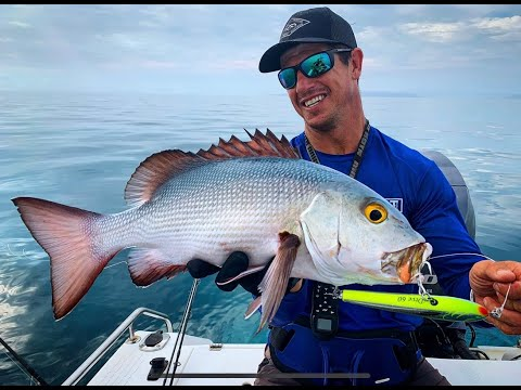 THE CAPE Ep 5 - FLYFISHING GOALS Trigger Fish And Outer Reef Action