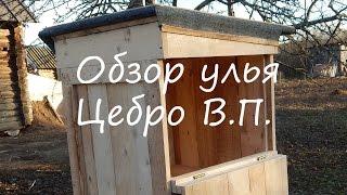 Пчеловодство с нуля: обзор улья Цебро В.П.