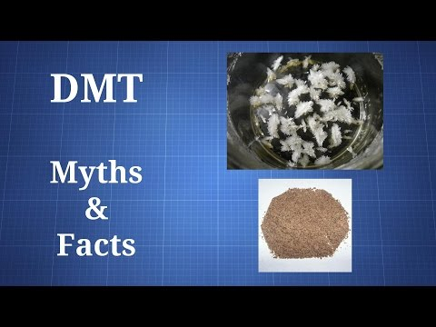 DMT: Myths and Facts