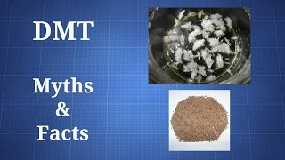 Download Video DMT: Myths and Facts MP3 3GP MP4