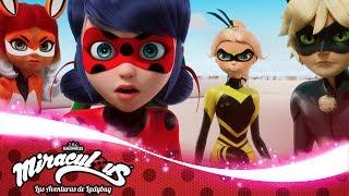 miraculous-mayura-el-da-de-los-hroes-parte-2-las-aventuras-de-ladybug