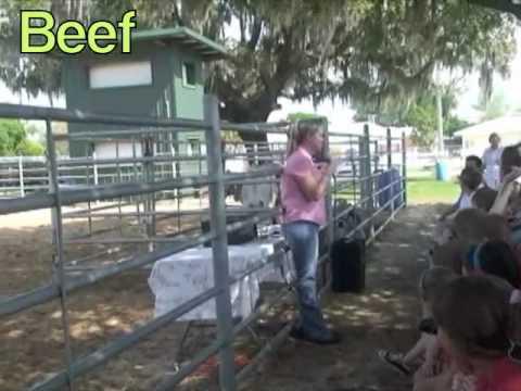 Agrifest 2010.wmv