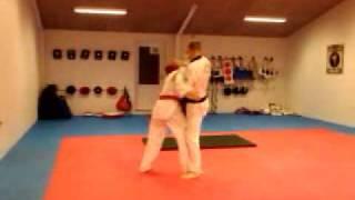 taekwondo Hanbon kireugi