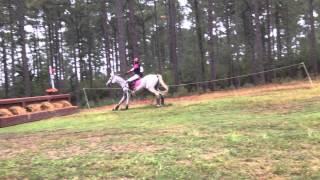 Watching some training Xc at Carolina horse park