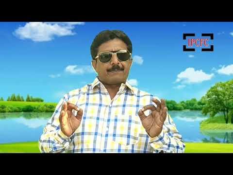 Indian Pest Control | Pre- Construction Termite Treatment | Termite Control | Pest Control