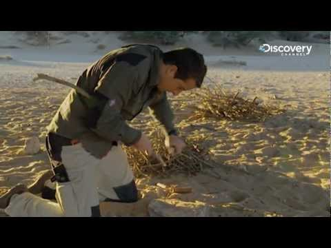 How To Stay Alive | Bear Grylls Special