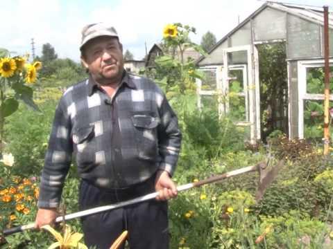 Вопрос: Какой формы садовая мотыга для окучивания картофеля самая удобная?